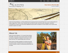 Surveyor Website Design